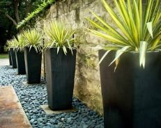 Striking contemporary planters